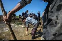 هفت هزار بسیجی به کمک سیل زدگان شمال کشور رفتند