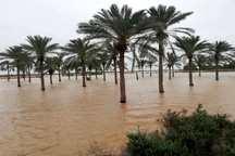 بهمنشیر زمین های کشاورزی معمره صنگور خرمشهر را زیر آب برد