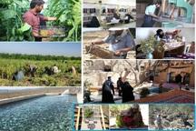 اشتغالزایی تنها راهکار ماندگاری جمعیت در روستاهای سمنان است