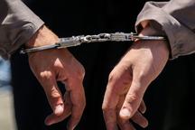12 سارق مسلح در سیستان و بلوچستان دستگیر شدند