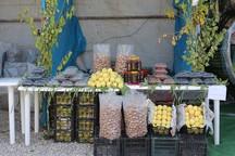 بازارچه محصول های روستایی در قم برپا شود
