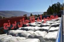 کشف محموله یک میلیارد ریالی برنج قاچاق در دهلران