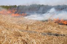 کشاورزان گلستان از آتش زدن بقایای گیاهی پرهیز کنند
