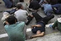 نقش ۸۰ درصدی معتادان در سرقتها و جرایم در زنجان