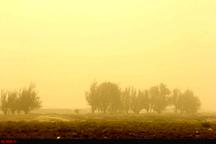 بحران وضعیت ریزگردها در هوای سیستان و بلوچستان  سرعت وزش باد به 90 کیلومتر رسید