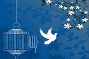 350 زندانی غیرعمد استان مرکزی آزاد شد