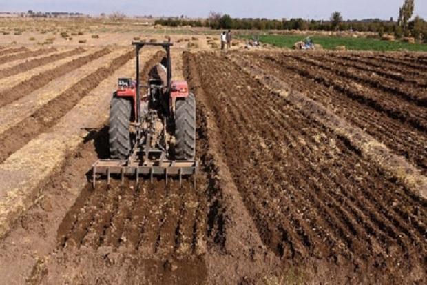 چهار هزار و 400 نفر در بخش کشاورزی اردبیل اشتغال یافتند