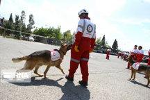 امدادگران گیلان به بیش از ۹۵۰ حادثه دیده امدادرسانی کردند