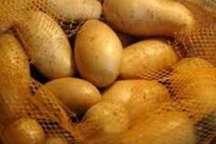 صادرات 10 هزار تن سیب زمینی از گلستان