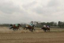 هفته یازدهم مسابقات اسبدوانی کورس گنبدکاووس برگزار شد