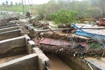 سیل به 412 مزرعه پرورش ماهی لرستان خسارت وارد کرد