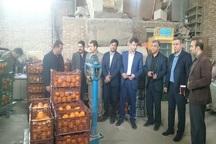 5 تخلف در توزیع 63 تن میوه در مهاباد گزارش شد