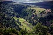 مانه و سملقان؛ سرزمین جنگل های سبز بلوط