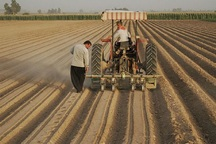 بهره برداری از 10 طرح کشاورزی در نهبندان آغاز شد