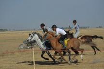 چمن سلطانیه، فرصت تاریخی برای توسعه سوارکاری