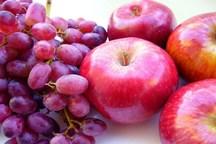 میوه شب عیدِ مردم تامین میشود؟