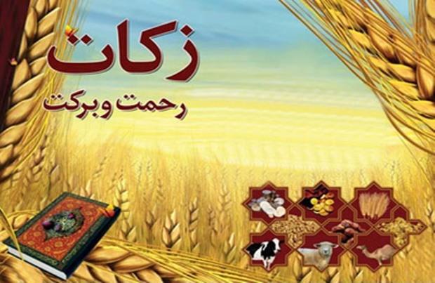 50 میلیارد ریال زکات در استان بوشهر جمع آوری شد