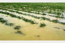 ۴.۶ میلیارد تومان برای جبران خسارات سیل در مراغه تخصیص یافت