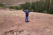 نهال هایی که در بوستان «شاهوی» مهاباد زود قطع شد