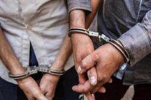 چند سارق منزل و کیف قاپ در شهرستان دماوند دستگیر شدند