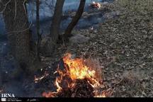 بخشی از مراتع باغملک آتش گرفت