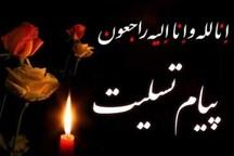 استاندار آذربایجانشرقی و امام جمعه تبریز پیام تسلیت دادند
