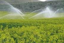 مدیریت بهینه مصرف آب، مهمترین دستور کار بخش کشاورزی زنجان
