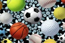 خاموشی چراغ اطلاع رسانی در هیات های ورزشی