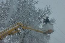برق 36 روستای شیروان وصل شد