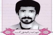 شهید رشیدی: برای ثبات جمهوری اسلامی به جبهه رفتم