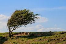 سرعت باد در همدان افزایش می یابد