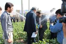 افتتاح طرح آبیاری 2240 هکتار زمین کشاورزی گچساران گامی برای توسعه
