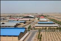 86 درصد تسهیلات رونق تولید در کرمان توسط بانک کشاورزی پرداخت شد