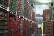 فرماندار: مجوز ساخت سردخانه در مراغه صادر نمی شود