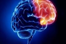 مردان بیشتر از زنان دچار سکتهی مغزی میشوند فشار خون زمینهای برای سکتهی مغزی است