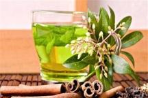 واحدهای طب سنتی خراسان شمالی مجوزی از بهداشت ندارند