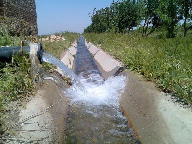 مشکل آب کشاورزی طارم با کشت محصولات کمآبخواه رفع میشود