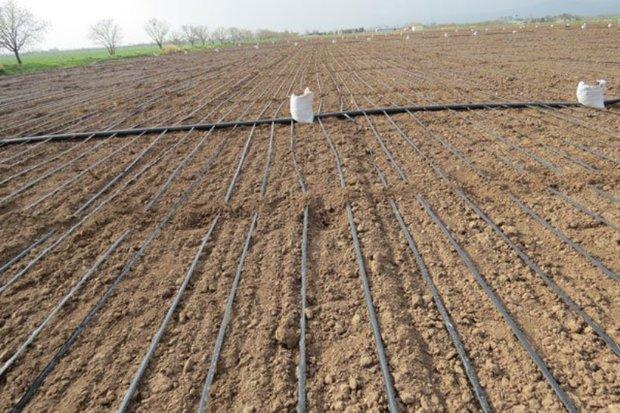 طرح های ناتمام آب و خاک کشاورزی قزوین امسال پایان می یابند