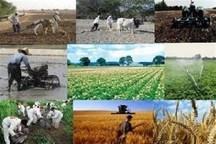 اجرای یکهزار طرح کشاورزی گلستان منتظر وام