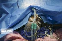 مرگ و میر در بیمارستان کوثر سمنان پایینتر از میانگین کشور است