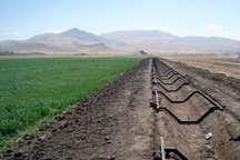 کشاورزی ظرفیت برجسته  دهلران برای افزایش درامد و رونق اشتغال است