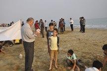 جشنواره مجسمه های شنی در بندردیر برگزار شد
