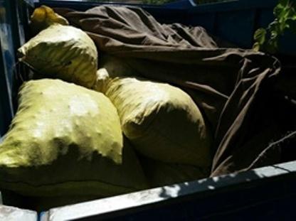 کشف یکهزار و 300 کیلوگرم موسیر قاچاق در شهرستان سلسله