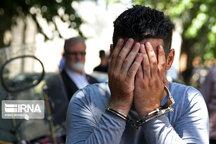 دستگیری یک سارق با ۲۵ فقره سرقت در سنندج