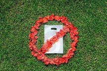 مراسم روز جهانی بدون نایلکس در قزوین برگزار شد