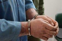 متهمان به سرقت مسلحانه در جزیره شیف دستگیر شدند
