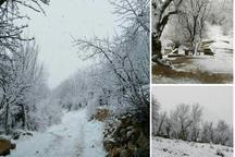 برف و باران سمیرم را فرا گرفت