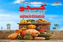 برگزاری سومین جشنواره کدو در پیاده راه فرهنگی شهدای ذهاب