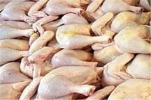 48 تن گوشت مرغ گرم با قیمت مصوب در گنبدکاووس توزیع شد