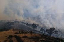 مهار آتش در منطقه حفاظت شده بوزین و مرخیل احتمال شعله ور شدن آتش هست